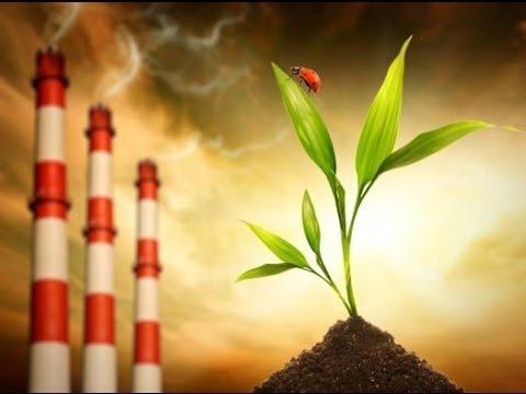 Carta a representantes políticos para reducir la exposición de la población y el medio ambiente a los contaminantes hormonales