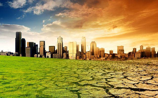 Organizaciones ecologistas piden a la ciudadanía votar teniendo en cuenta el medio ambiente